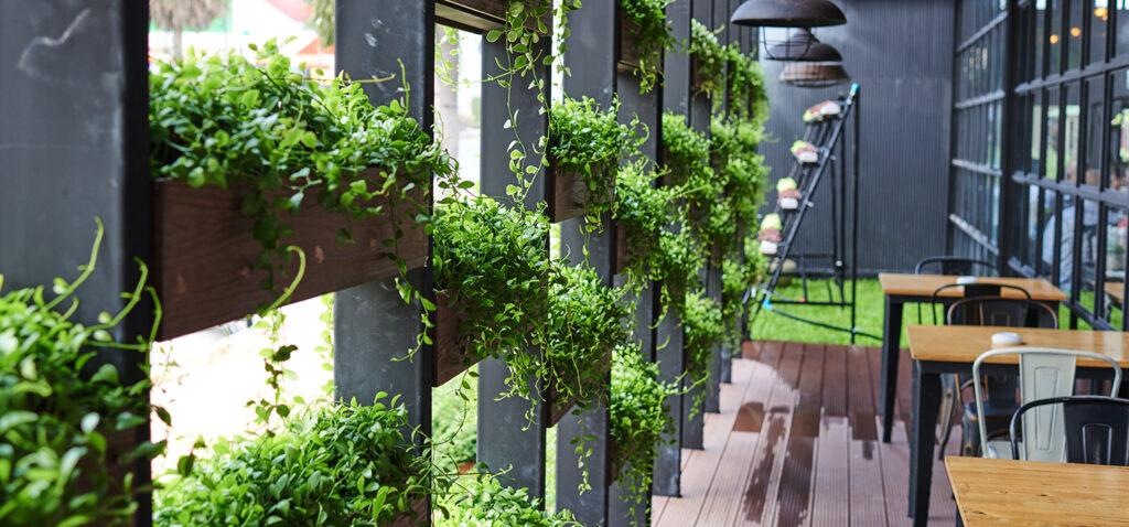 inredning med gröna växter på restaurang.